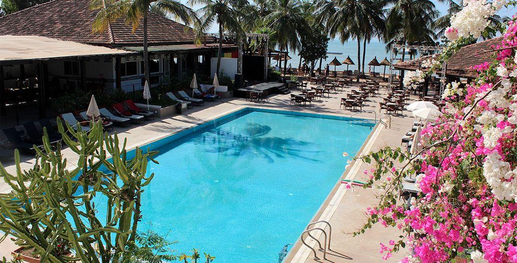 Zin in een paradijselijke vakantie?