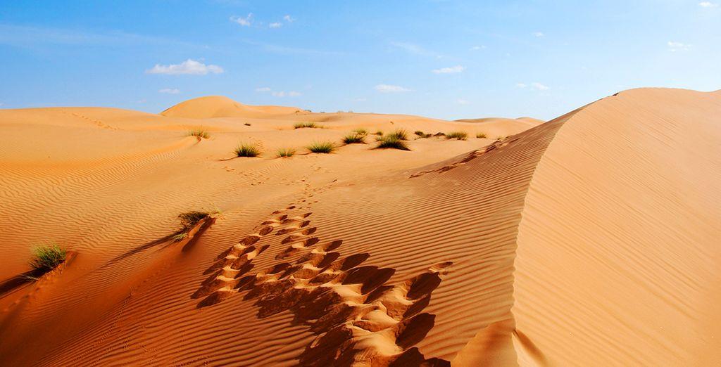 En de omliggende woestijn