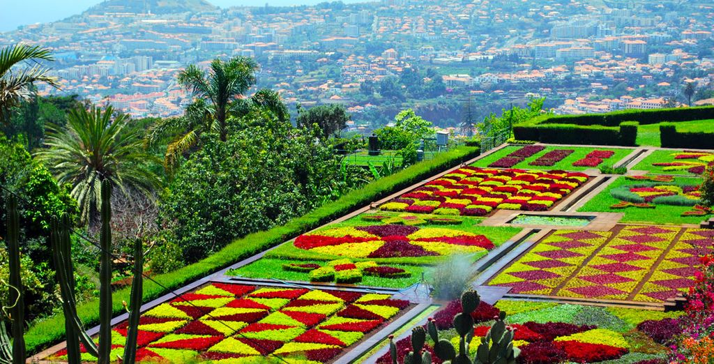 Stay near the gorgeous botanical gardens of Madeira!