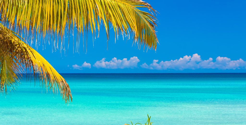 Fly to Cuba and enjoy its wonders