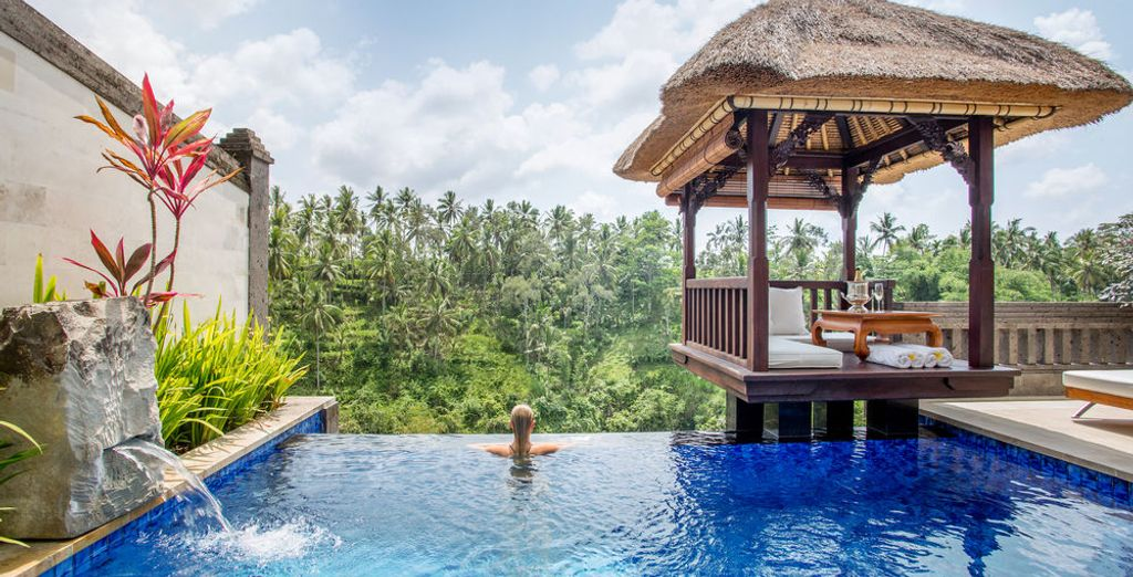Where you can enjoy views of the exotic surroundings at your leisure