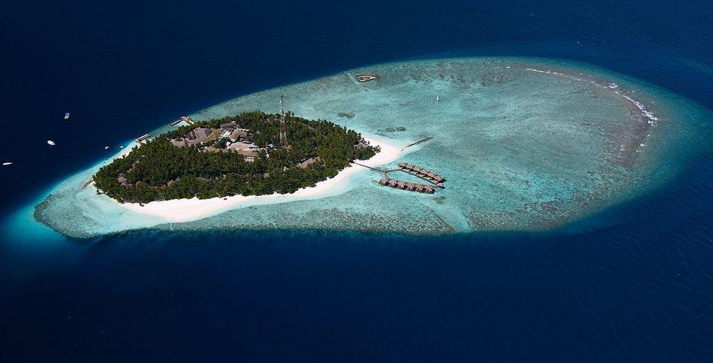 Jet off to Fihalhohi Island Resort - Sri Lanka Tour & Maldivian Paradise 4/5* Colombo