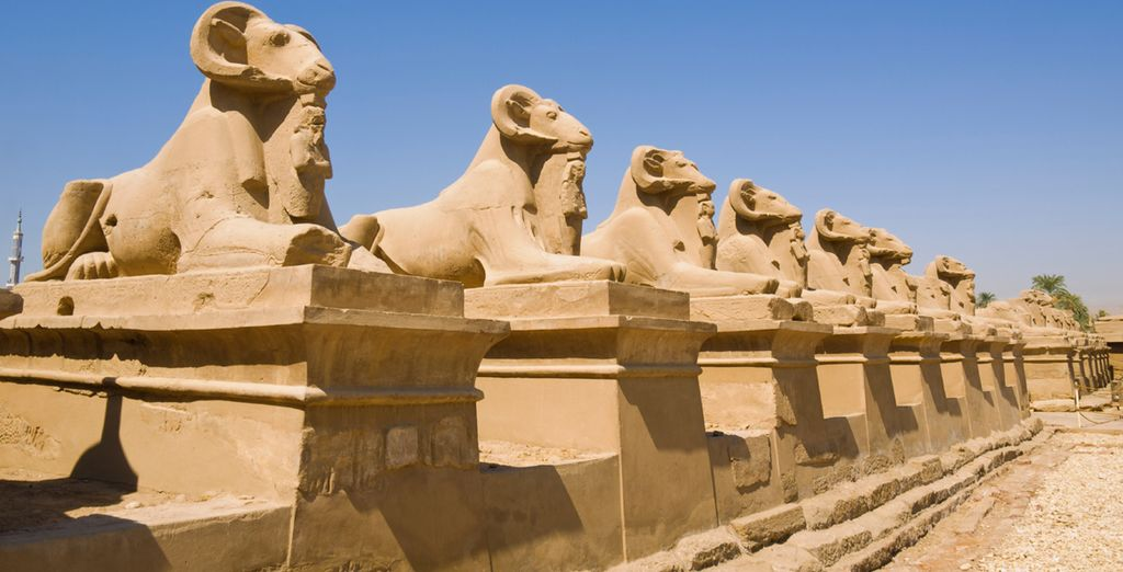 Before finishing in Luxor with a visit to the Temples of Karnak