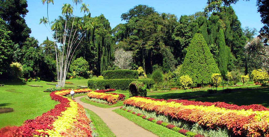 Meander through the bright beauty of the Royal Botanical Gardens
