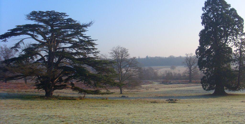Explore the idyllic surrounding countryside