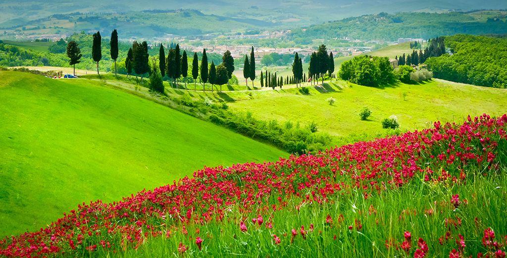 Explore your stunning surroundings