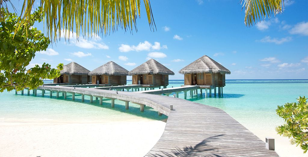 With everything you want from a luxury resort
