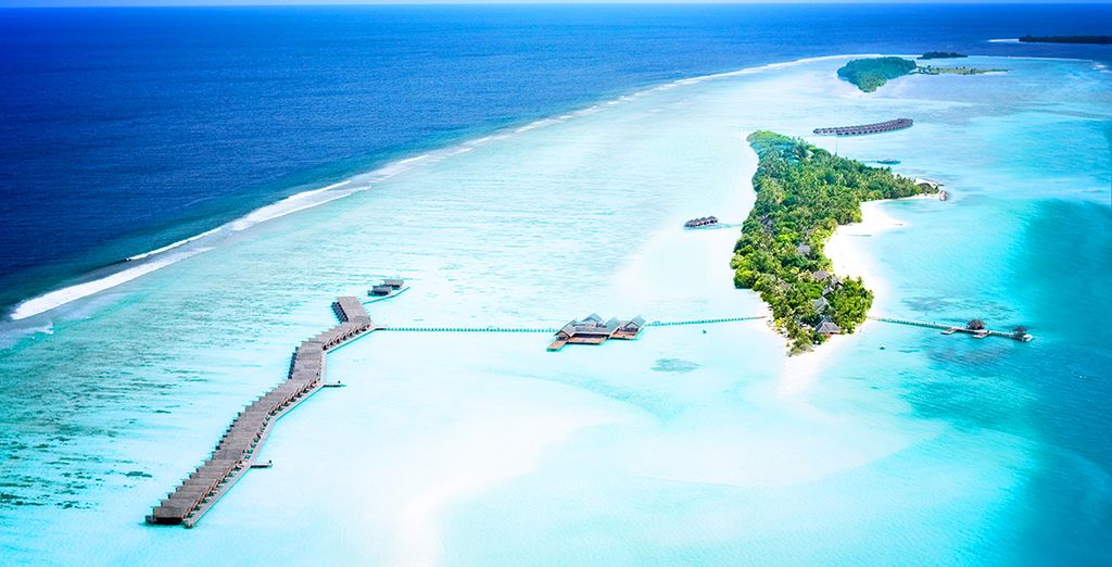 In the clear Indian Ocean, a true paradise on earth