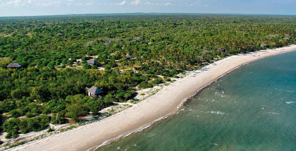 Begin with 3 nights at Simply Saadani Camp - on the edge of the Indian Ocean...