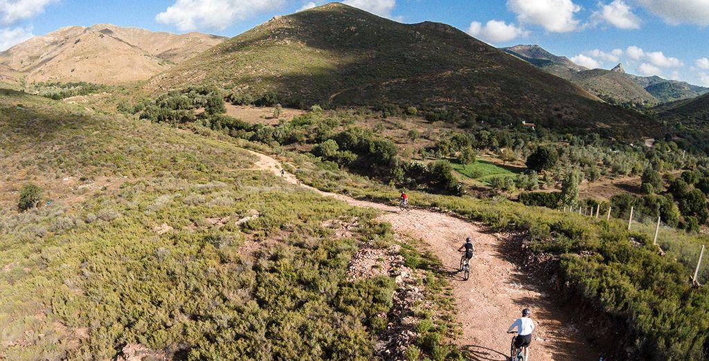 Explore a biking trail