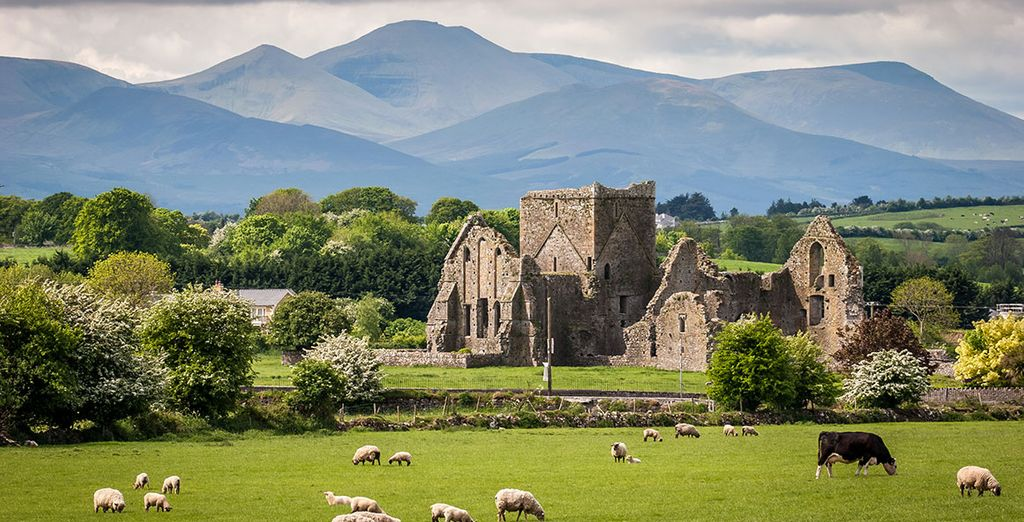 Plan your holidays to Ireland with our Travel Guide
