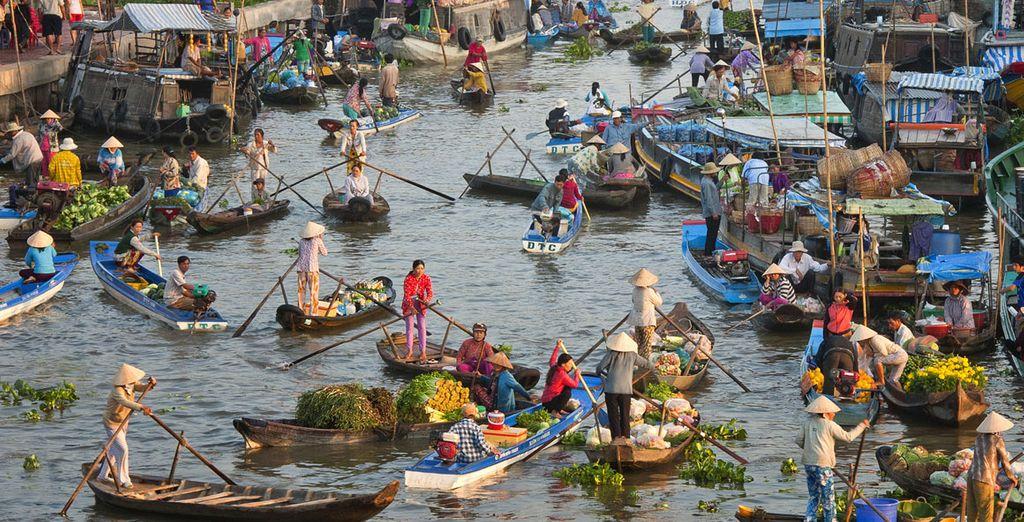 Be immersed in Vietnam's vibrant culture...