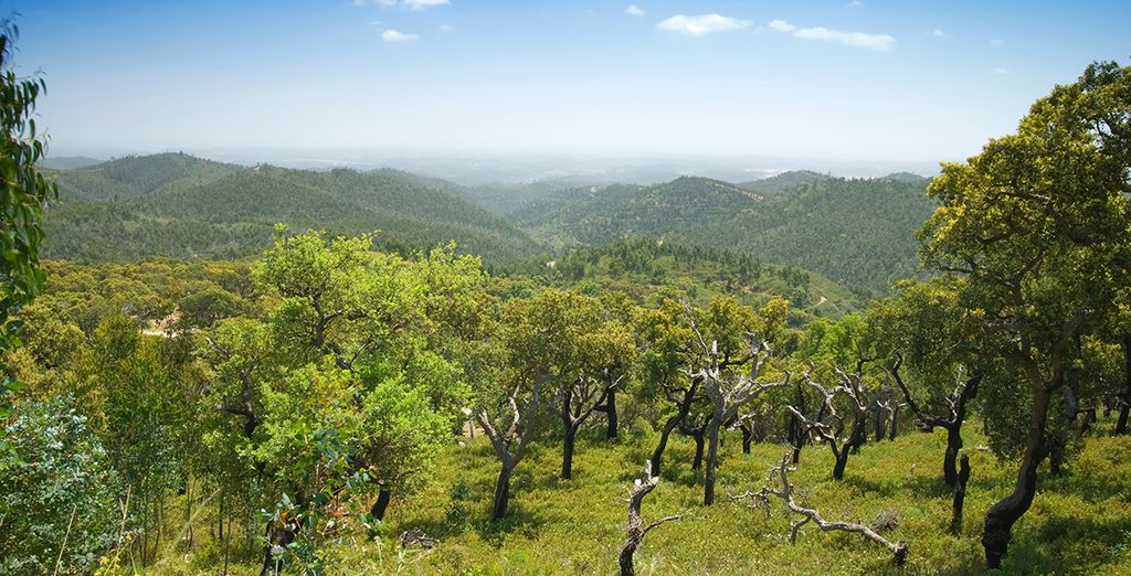 Explore this wonderful area of Portugal with added car hire