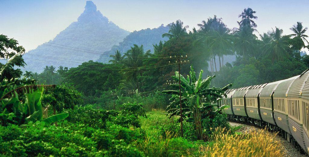 Through lush landscapes