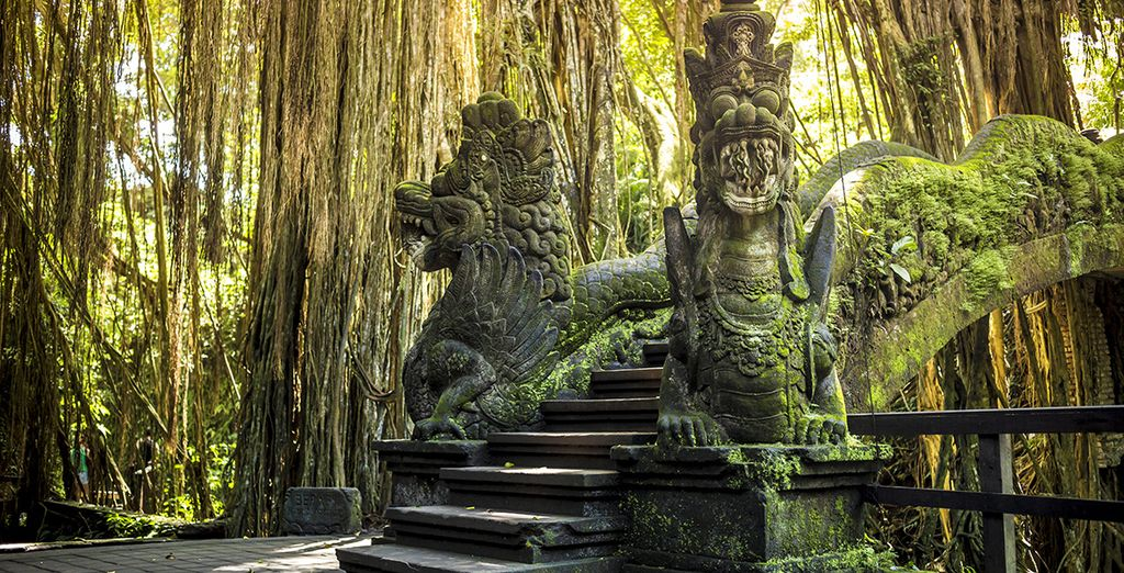 To the nature of Monkey Forest!