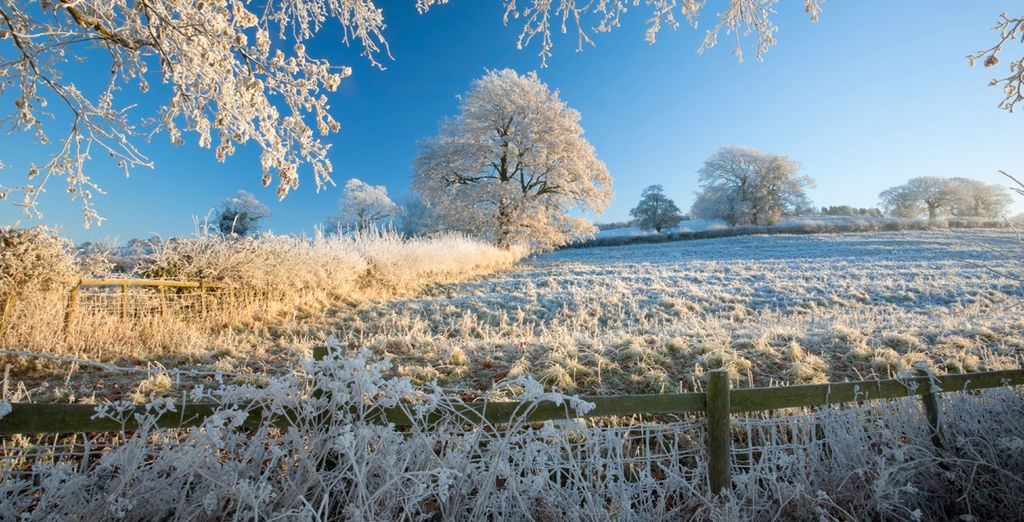 You will be perfectly placed to enjoy a gorgeous winter stroll in the Cotswolds
