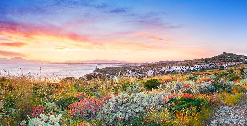 To blooming coastal scenes