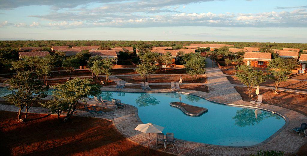 Including romantic desert camps (Damara Mopane Lodge)