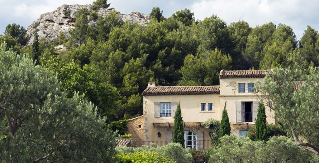 An ideal location at the foot of Les Baux de Provence