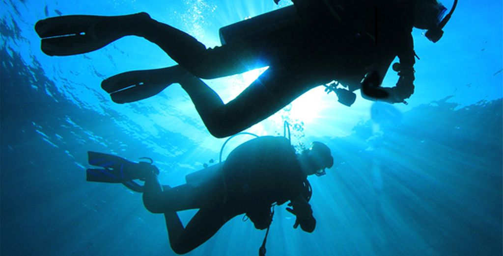 Or head under the waves to discover the rich marine life
