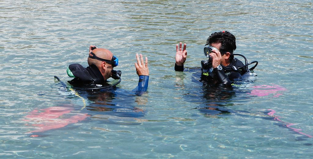 Explore the underwater world at the PADI diving centre