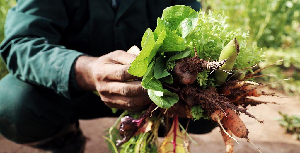 Alongside produce grown by the hotel itself