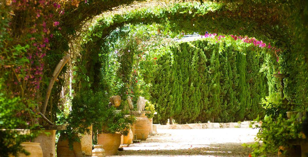 Take a stroll through the lush grounds...