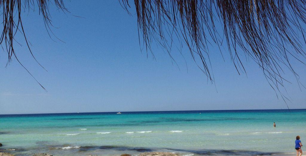 Visit the beautiful Es Trenc Beach!