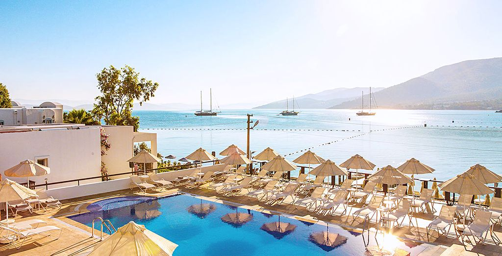 Sina Hotel 4* - best booking offers