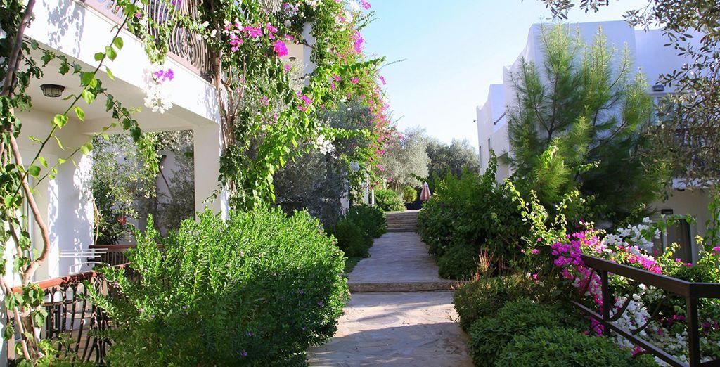 Walk along the lush pathways
