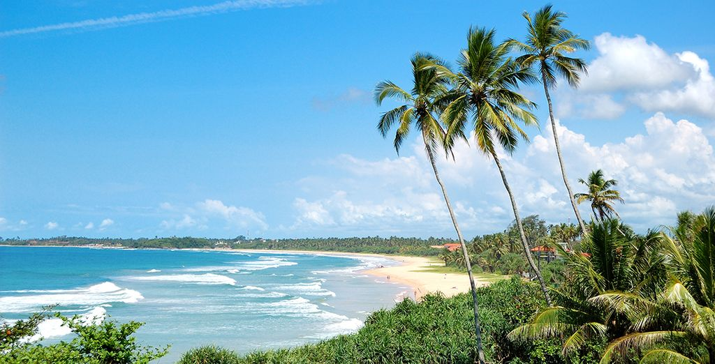 Located along one of the finest beaches in Sri Lanka