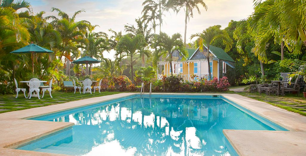 Discover a small, friendly boutique hotel - The Hermitage Plantation Inn Nevis 4* Nevis