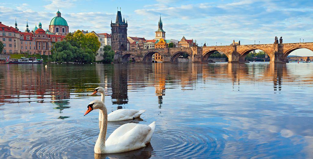 A summer getaway in a fairytale city