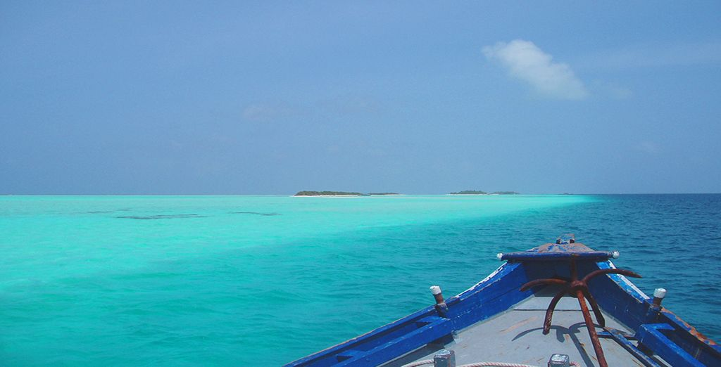 This is the Indian Ocean at its finest