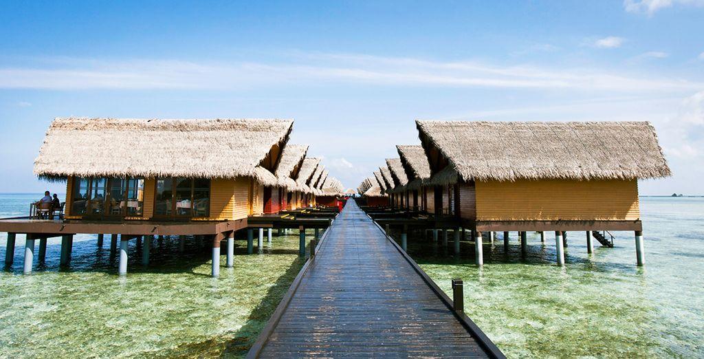 Or upgrade to an Ocean Villa