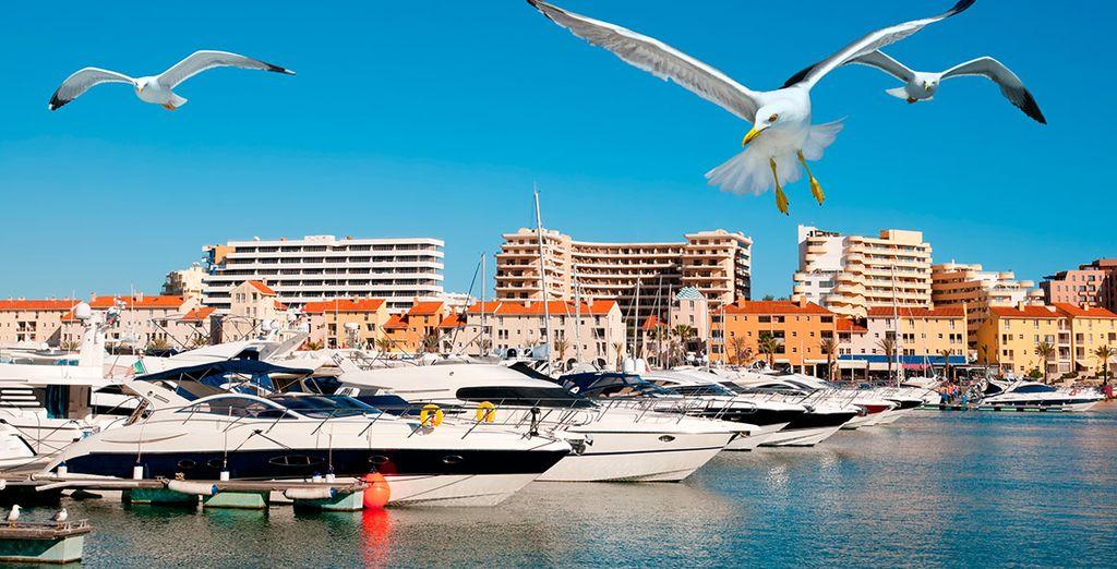 Walk on the Vilamoura marina