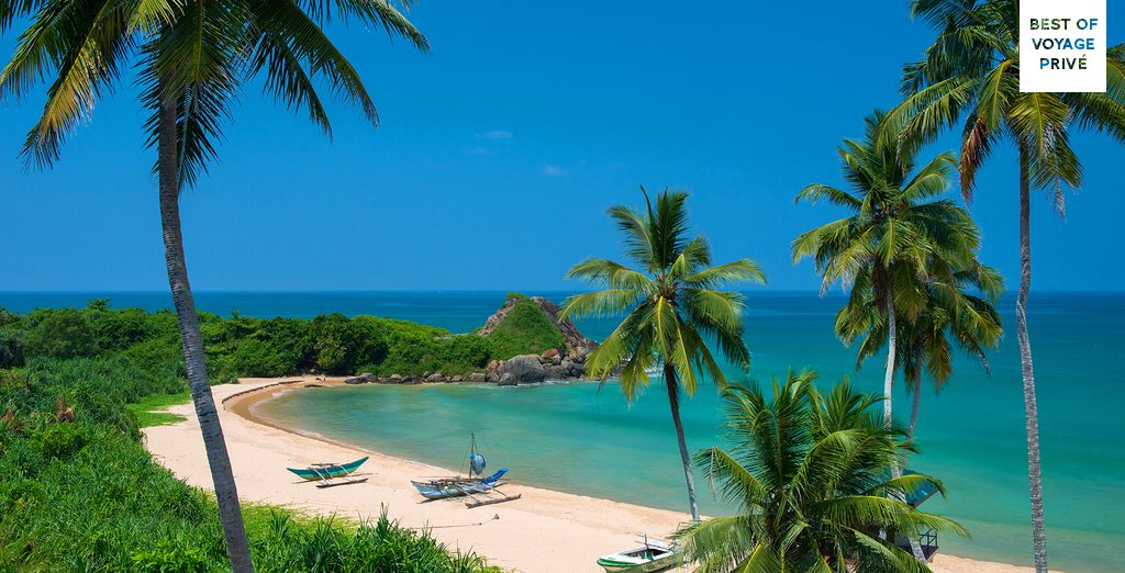 Discover beautiful Sri Lanka - Sri Lanka Round Tour & Shinagawa Beach Stay Kandy