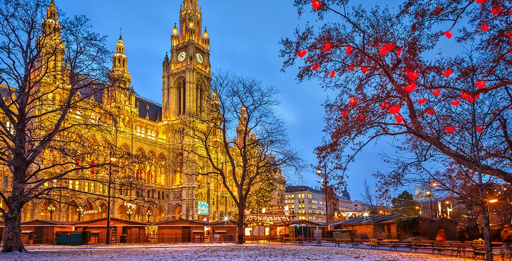 Explore the many beautiful sights Vienna has to offer