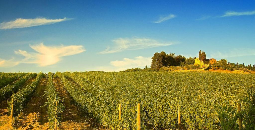 Experience the wonderful Tuscan countryside