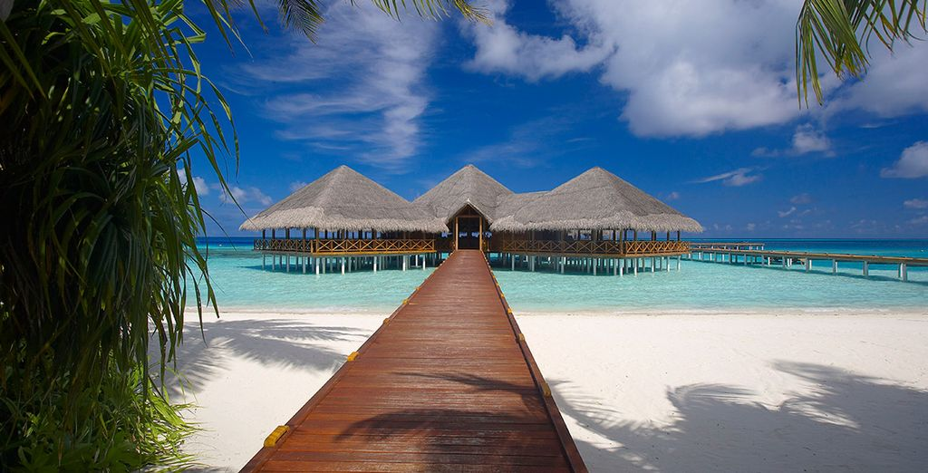 Welcome to the beautiful Maldives