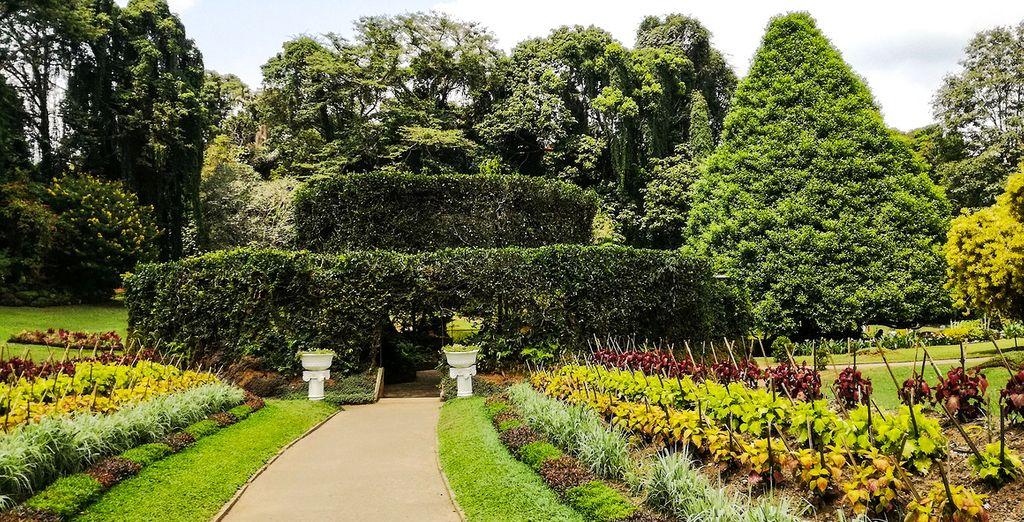 Visit the Royal Botanical Gardens