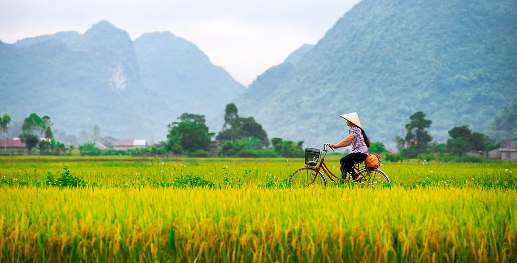 Discover the beauty of Indochina, with a trip through Vietnam, Laos and Cambodia