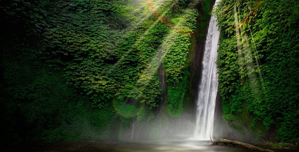 A scenic cycle ride to local Sekumpul waterfalls