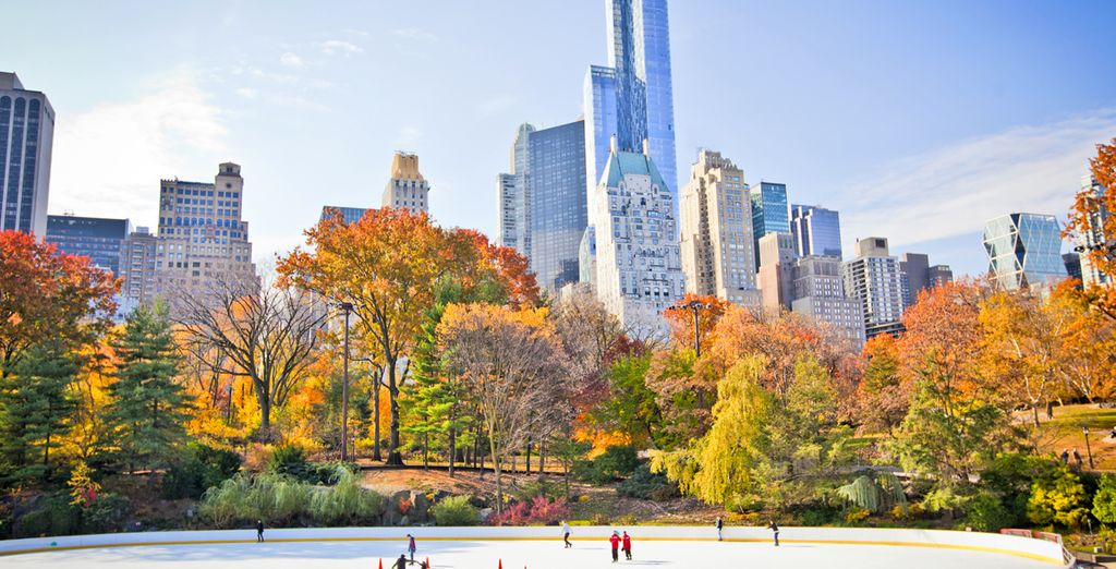 Admire the contrasts of Central Park