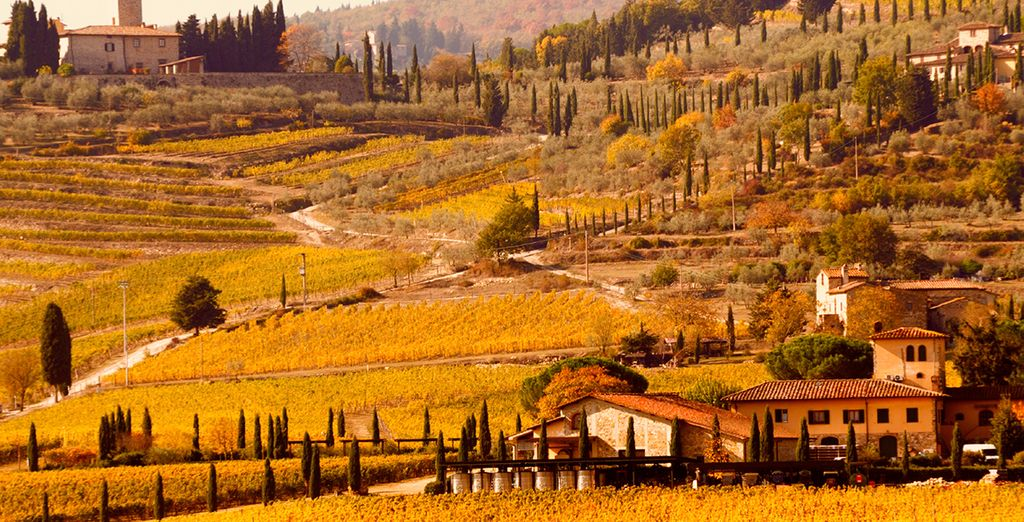 Enrich yourself in the region of Chianti
