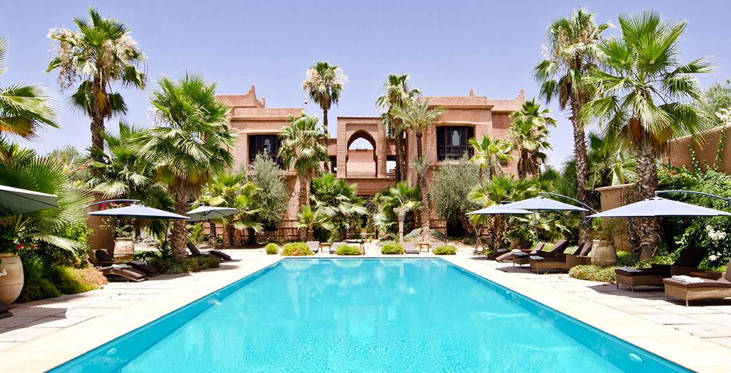 Discover a sunny oasis in Morocco