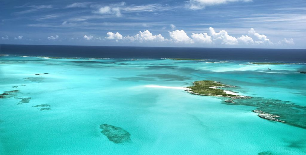 Enjoy a relaxing Bahamas cruise