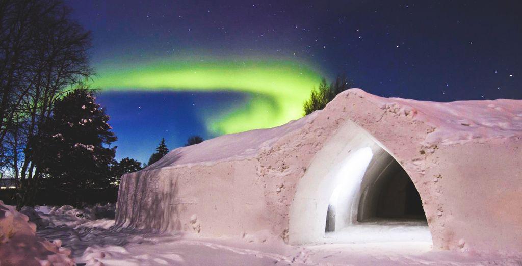 Experience a snowy paradise