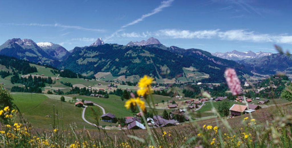 - Hotel Arc en Ciel**** - Gstaad - Switzerland Gstaad