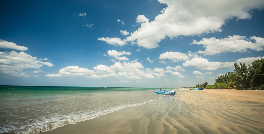 Experience the vibrancy and diversity of Sri Lanka on this 5* escape